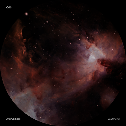 ORION FINAL_01272.png