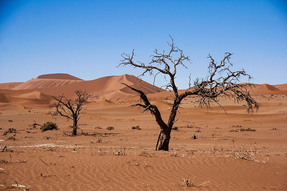 KSVISIONS-NAMIBIA-Sossusvlei_Red_Sand_Du