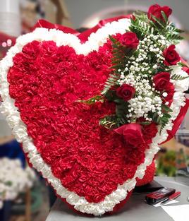 RH16 - BLEEDING HEART WHITE OUTLINE