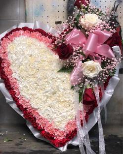 RH26 - BLEEDING HEART