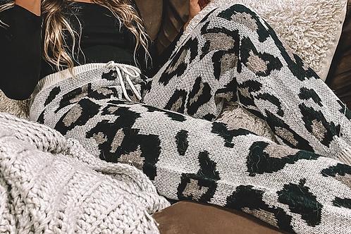 Cheetah and Chill