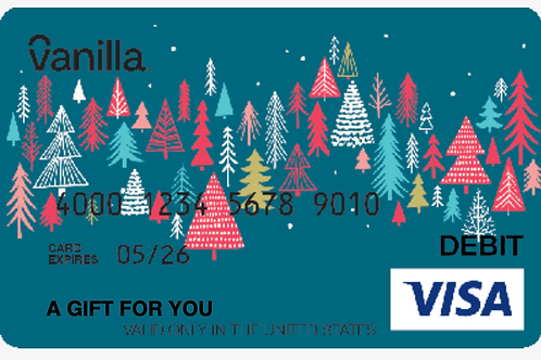 Visa Gift Card $25 - $100