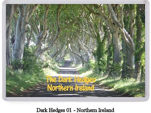 Dark Hedges Fridge Magnets
