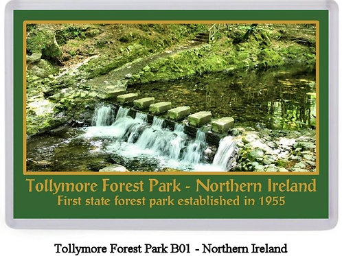 Tollymore Forest Park Fridge Magnets