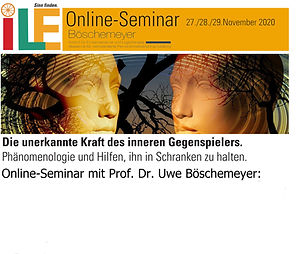 OnlineSeminarBöschemeyer.jpg