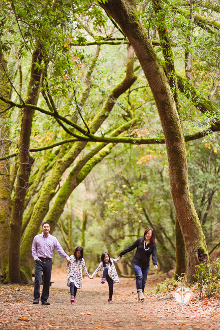 Bay-Area-lifestyle-family-photography-family-walking-in-magical-green-moss-lined-trees