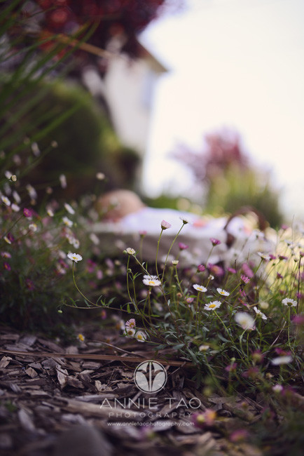 East-Bay-lifestyle-newborn-photography-wildflowers-in-foreground