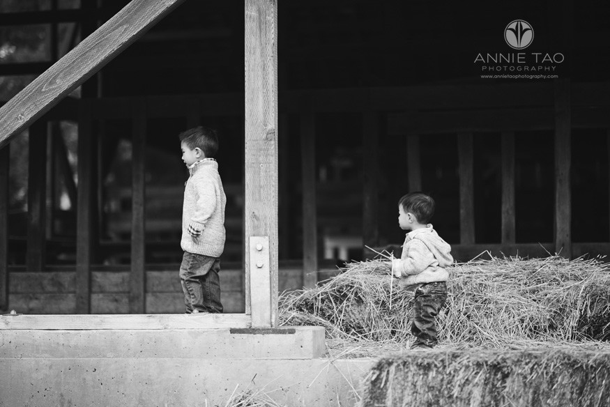 East-Bay-lifestyle-children-photography-two-brothers-walking-to-left-in-barn-BxW