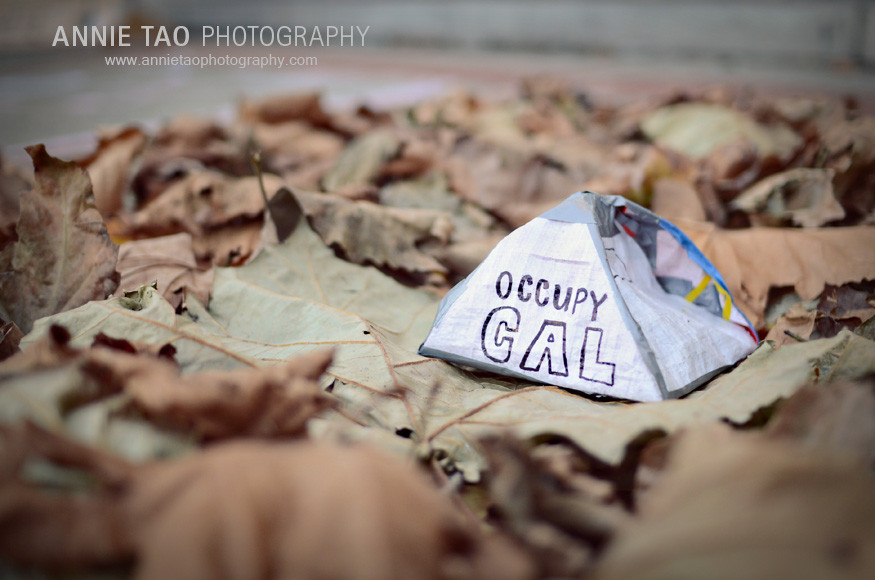East-Bay-lifestyle-family-photography-Occupy-Cal-protest-at-UC-Berkeley