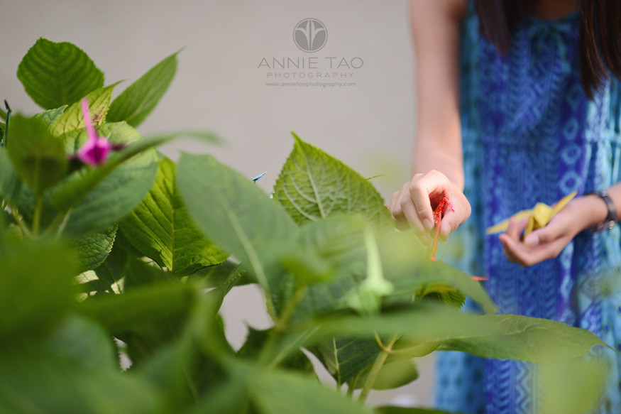 East-Bay-lifestyle-preteen-photography-girl-putting-11th-origami-crane-in-wishing-bush