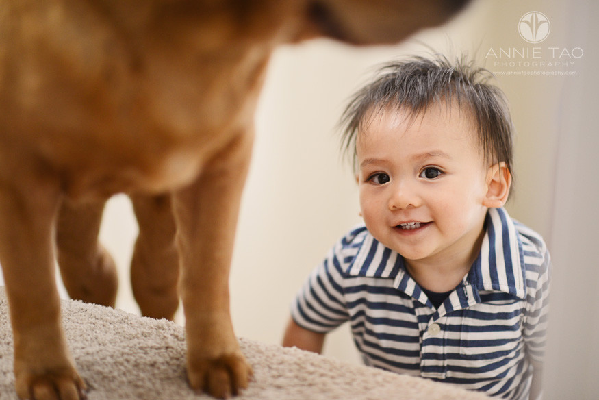South-Bay-lifestyle-baby-photography-baby-peeking-around-stairs-and-dog