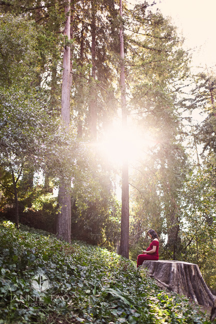 East-Bay-lifestyle-maternity-photography-pregnant-woman-sitting-and-praying-on-giant-stump-in-woods