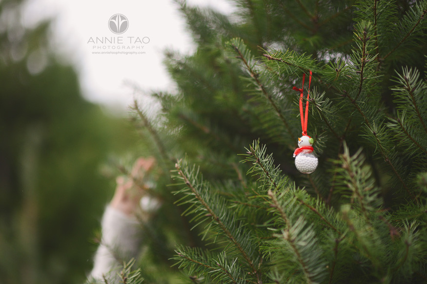 bay-area-lifestyle-photography-ornament-closeup-in-tree-farm