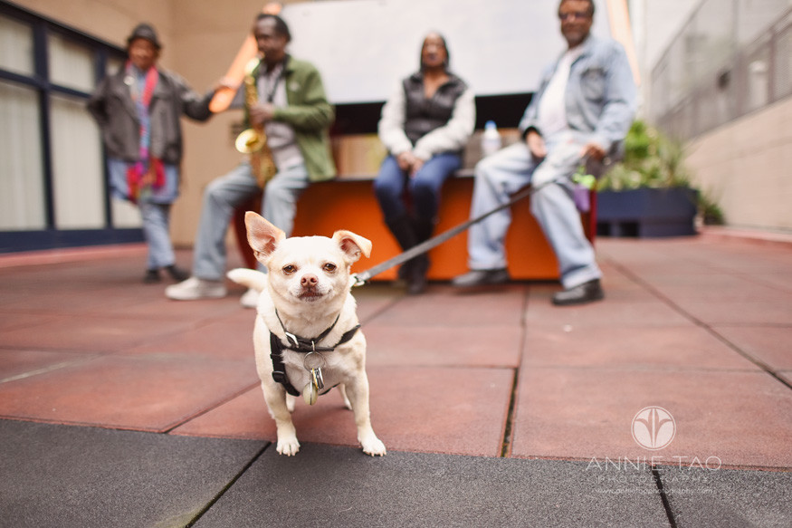 San-Francisco-commercial-photography-affordable-housing-community-group-with-dog