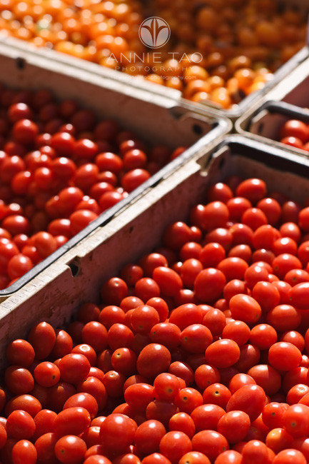 San-Francisco-Bay-Area-lifestyle-photography-tomatoes-at-farmers-market