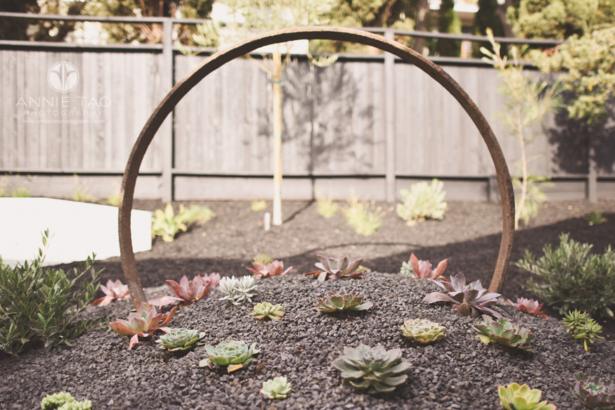 East-Bay-photography-backyard-succulent-garden-with-circle-art