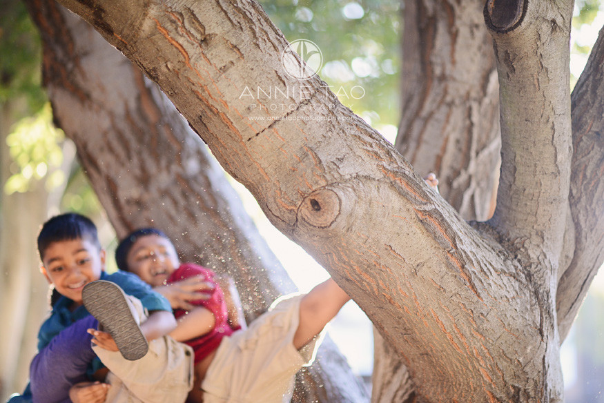 East-Bay-lifestyle-children-photography-brothers-falling-out-of-a-tree