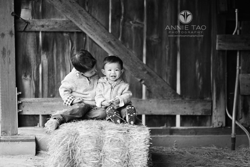 East-Bay-lifestyle-children-photography-toddler-boy-smiles-while-big-brother-watches-on-haystack