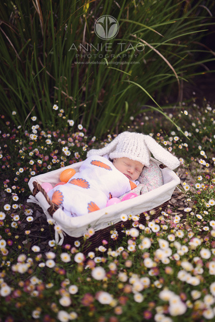 East-Bay-lifestyle-newborn-photography-baby-bunny-in-basket