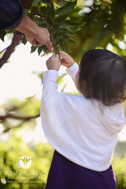 San-Francisco-lifestyle-children-photography-toddler-picking-flower