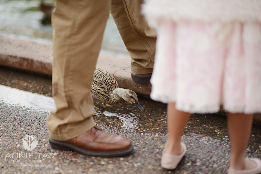 East-Bay-lifestyle-photography-duck-by-legs