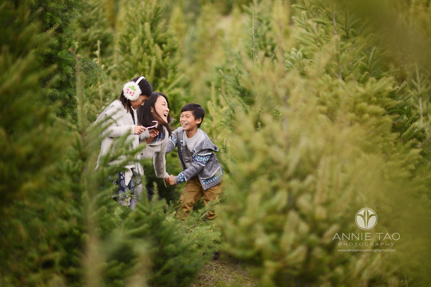bay-area-lifestyle-family-photography-mother-playing-hide-and-seek-with-kids-in-tree-farm
