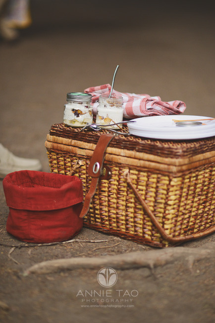 San-Francisco-lifestyle-photography-completed-picnic