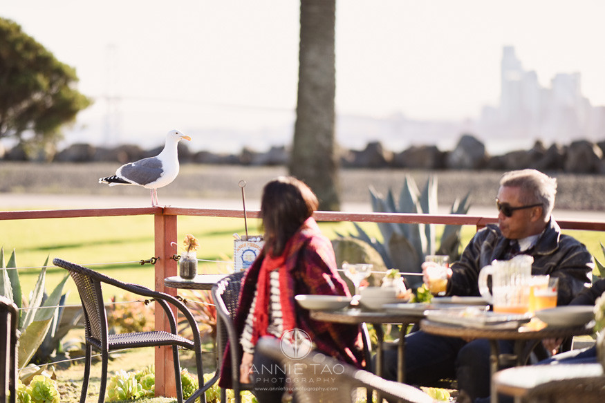 San-Francisco-lifestyle-family-photography-dining-at-outdoor-patio-photobomb