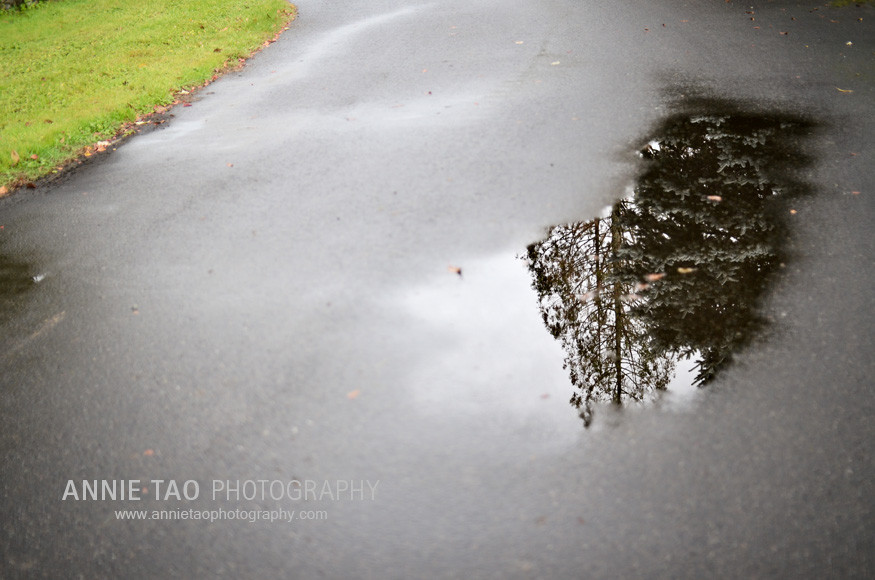 Seattle-lifestyle-photography-rain