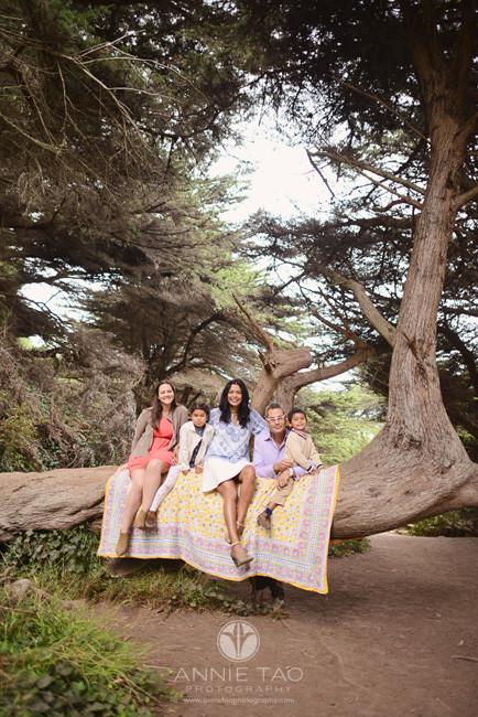 San-Francisco-lifestyle-family-photography-family-sitting-on-horizontally-growing-tree