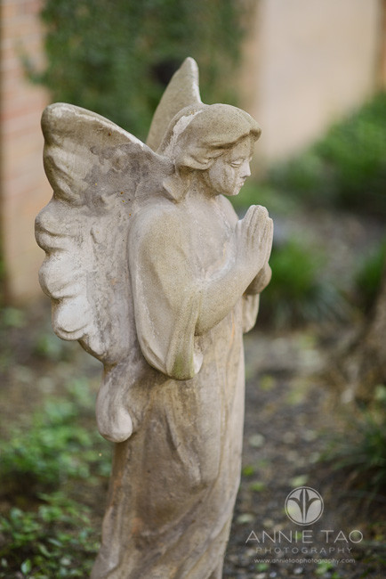 Commercial-education-photography-school-grounds-angel-statue