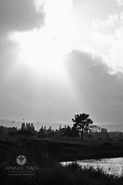 bay-area-lifestyle-photography-rays-of-sunlight-beaming-through-clouds-after-rain-bxw