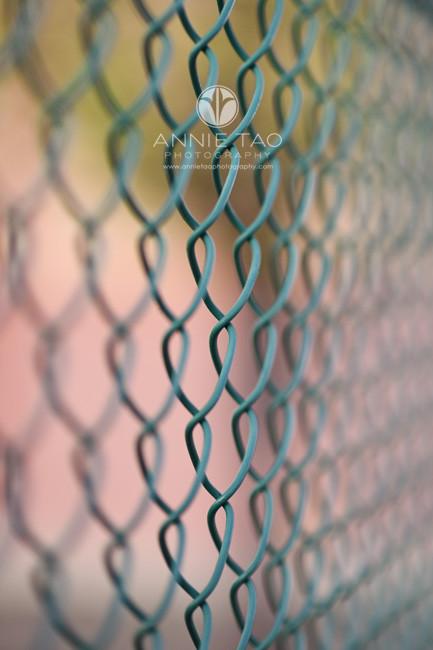 East-Bay-photography-concept-shoot-wire-fence-with-colorful-background