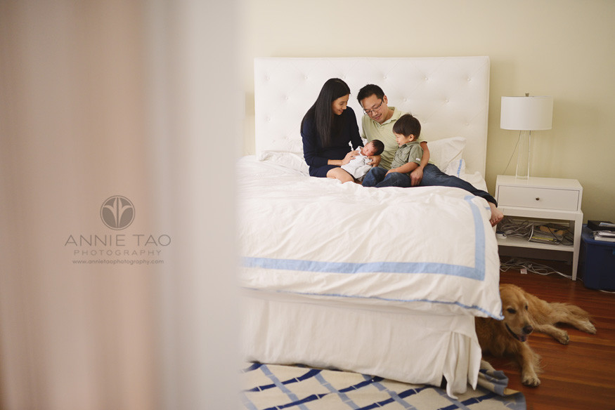 San-Francisco-lifestyle-newborn-family-photography-family-with-baby-and-toddler-on-the-bed-while-their-dog-lays-on-the-floor
