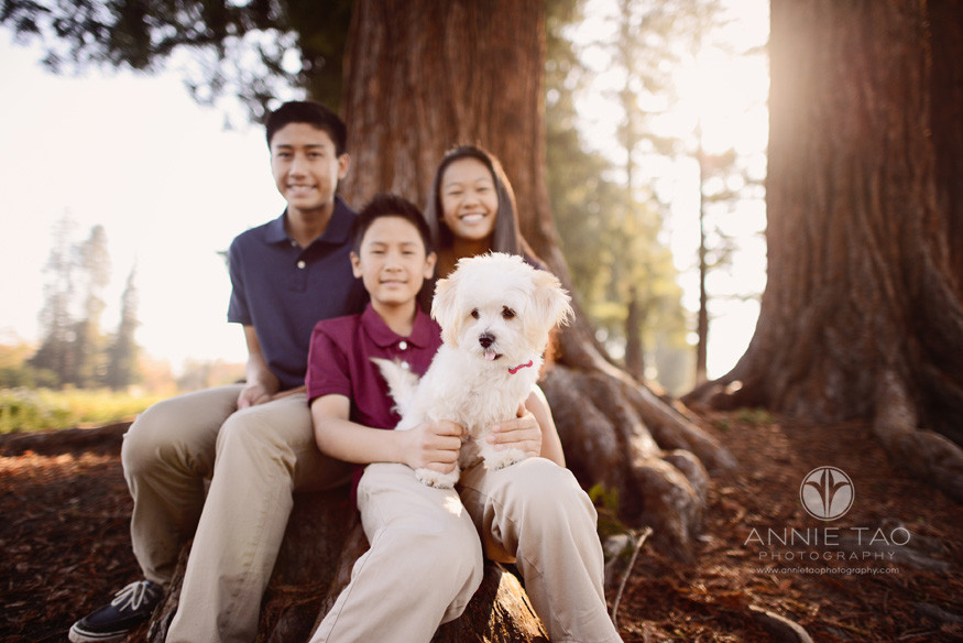 South-Bay-lifestyle-teen-photography-three-siblings-sitting-with-newest-family-member-white-puppy