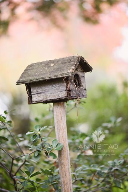 san-francisco-bay-area-lifestyle-wooden-birdhouse