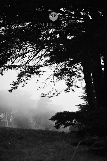 San-Francisco-lifestyle-photography-lands-end-with-fog-BxW