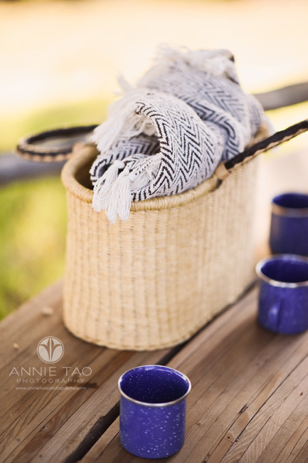 San-Francisco-bay-area-lifestyle-photography-basket-with-blue-mugs-and-chevron-blanket