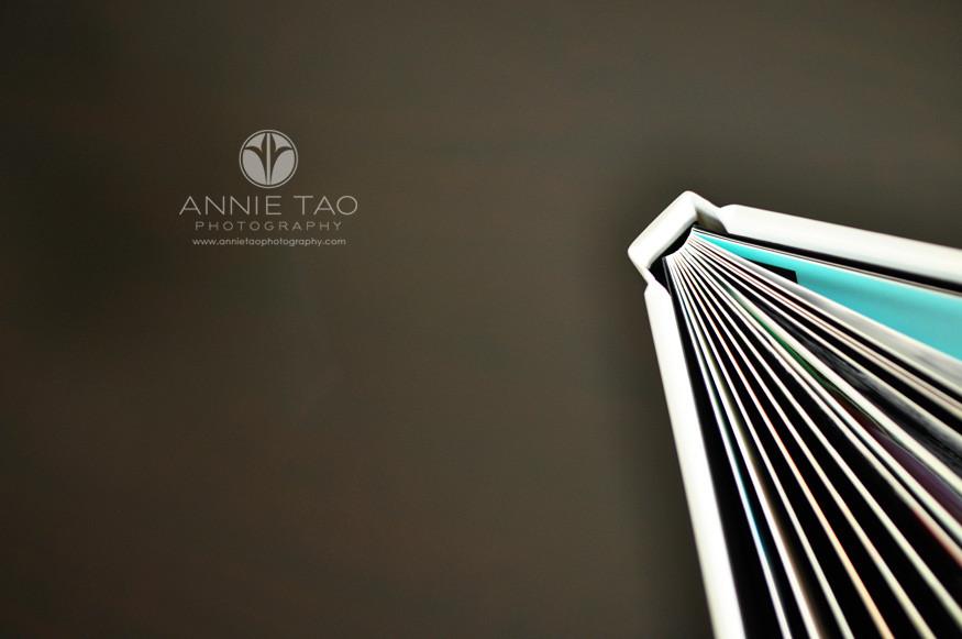 ATP-Client-Order-10x10-Fine-Art-Book-top