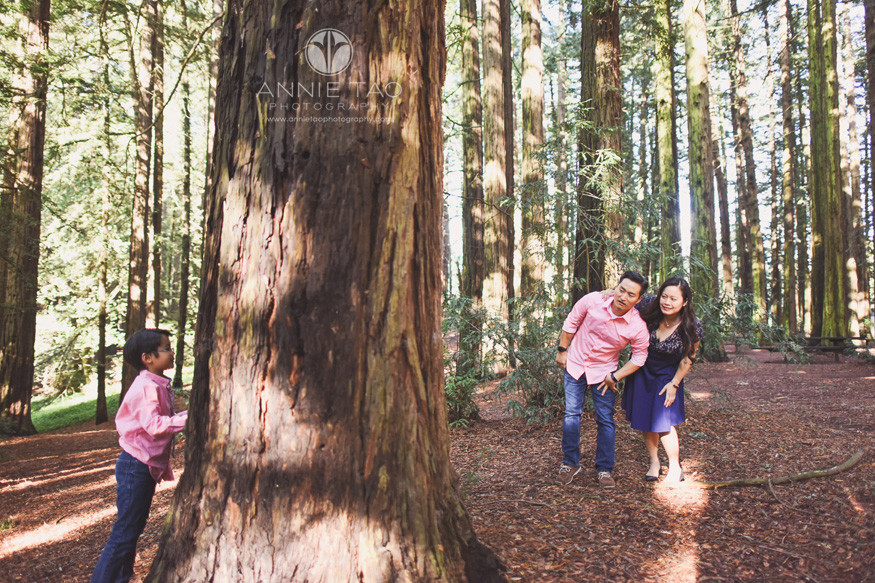 East-Bay-lifestyle-family-photography-parents-on-other-side-of-redwood-tree-than-son