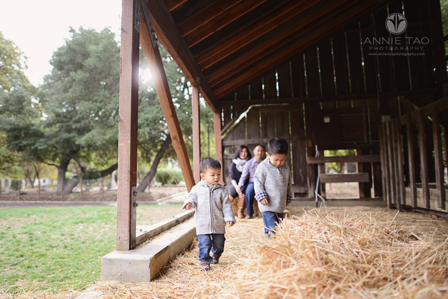 East-Bay-lifestyle-family-photography-young-brothers-checking-out-barn