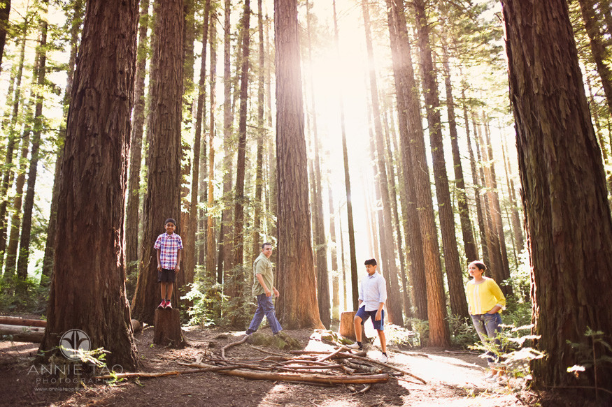 East-Bay-lifestyle-family-photography-family-spread-out-in-redwood-forest