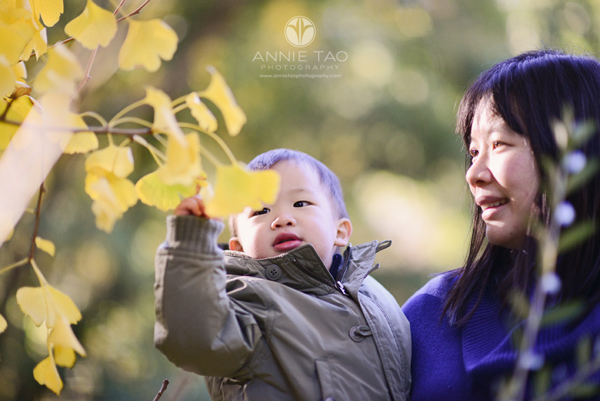Bay-Area-lifestyle-family-photography-mother-holding-toddler-son-to-pick-yellow-leaf