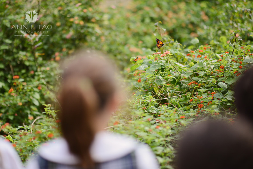 Commercial-education-photography-students-observing-butterflies-in-garden