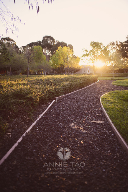 East-Bay-Commercial-Photography-Bishop-Ranch-Veterinary-sunrise-on-walk-path