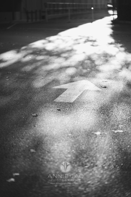 South-Bay-lifestyle-photography-arrow-on-road-BxW