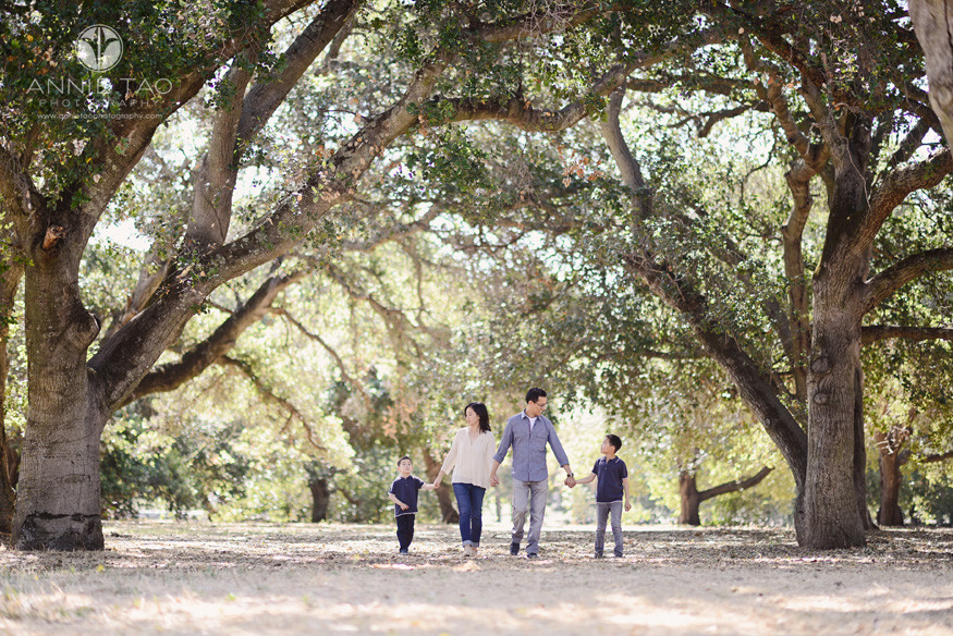 Bay-Area-lifestyle-family-photography-family-holding-hands-among-big-trees