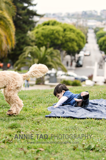 San-Francisco-Lifestyle-Family-Photography-baby-falling-over