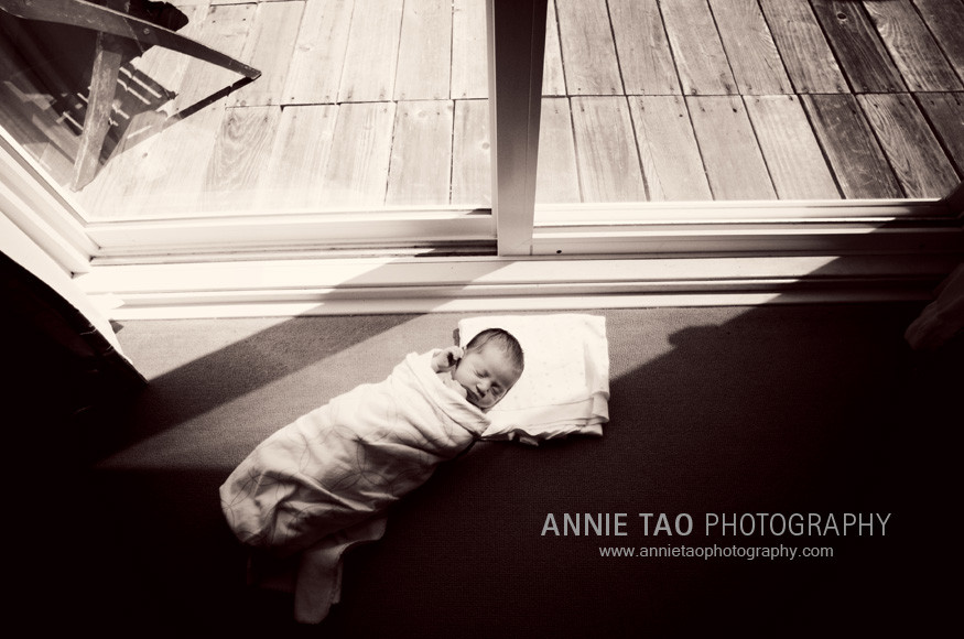 San-Francisco-newborn-photography-baby-by-the-window