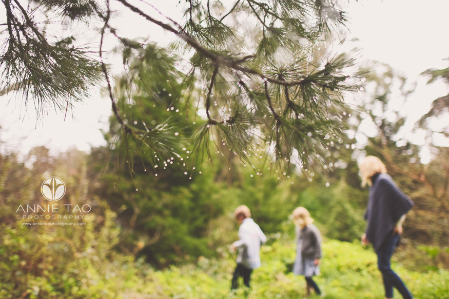 San-Francisco-lifestyle-photography-raindrops-in-pine-tree-needles-while-family-plays
